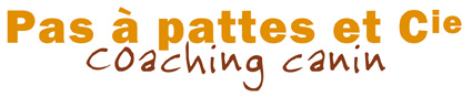 Logo signature texte blog