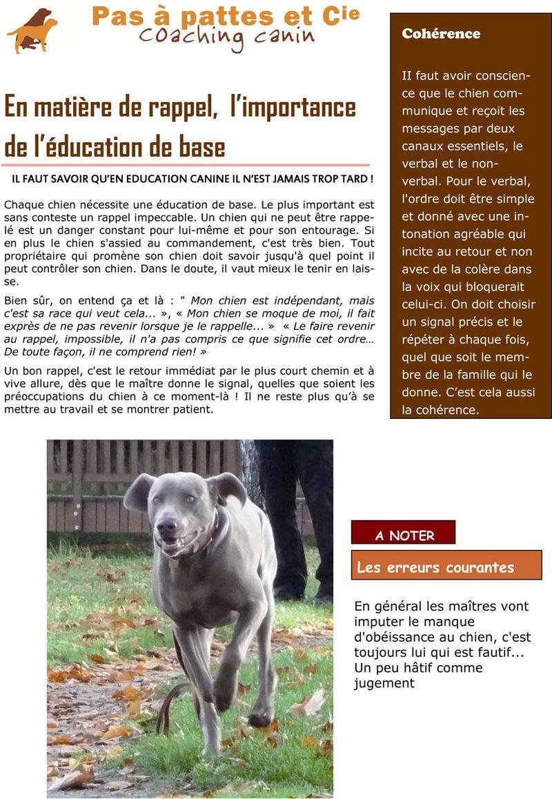 Texte blog 1 aout 2012 ESSAIS