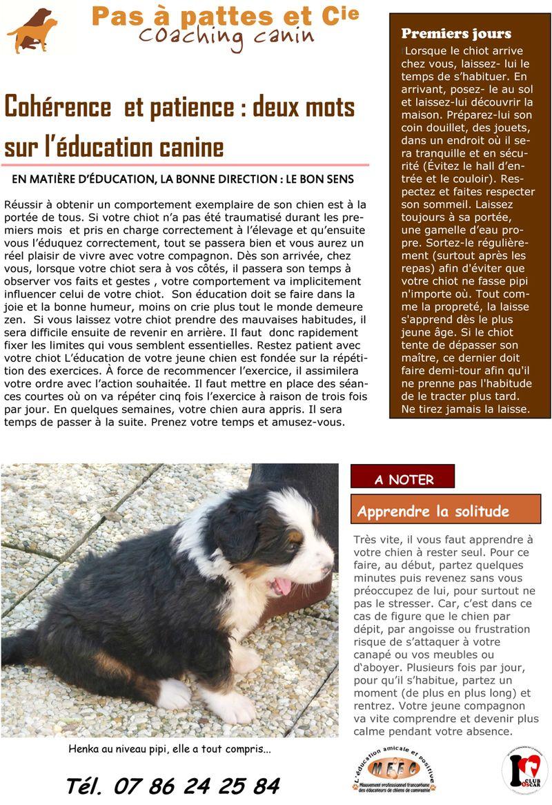Blog 6 janvier 2013-1