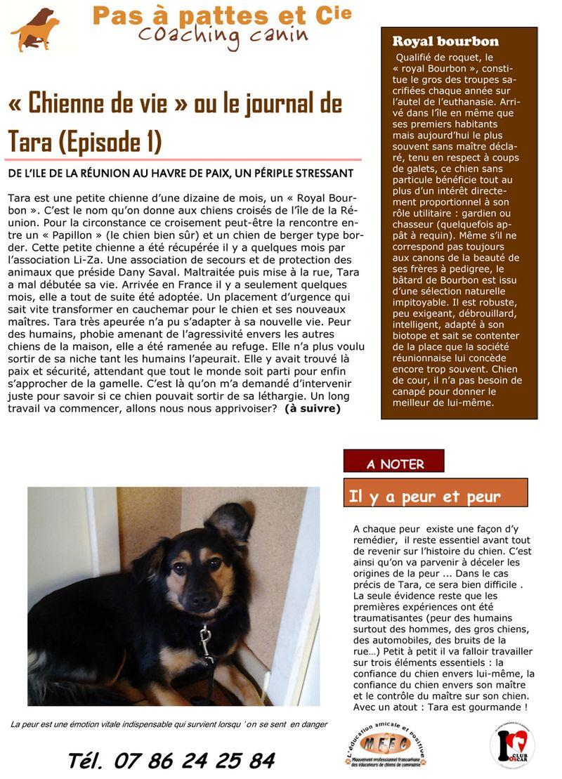 Blog 28 juillet 2013-1