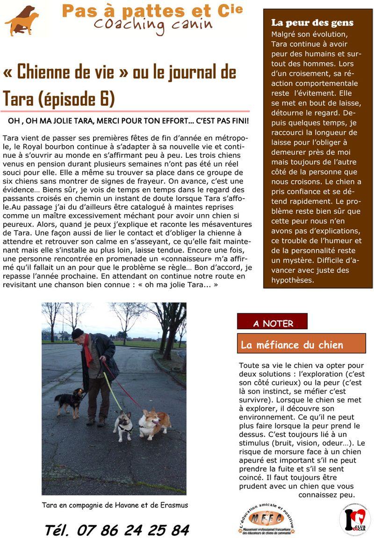 Blog 26 janvier  2014-1