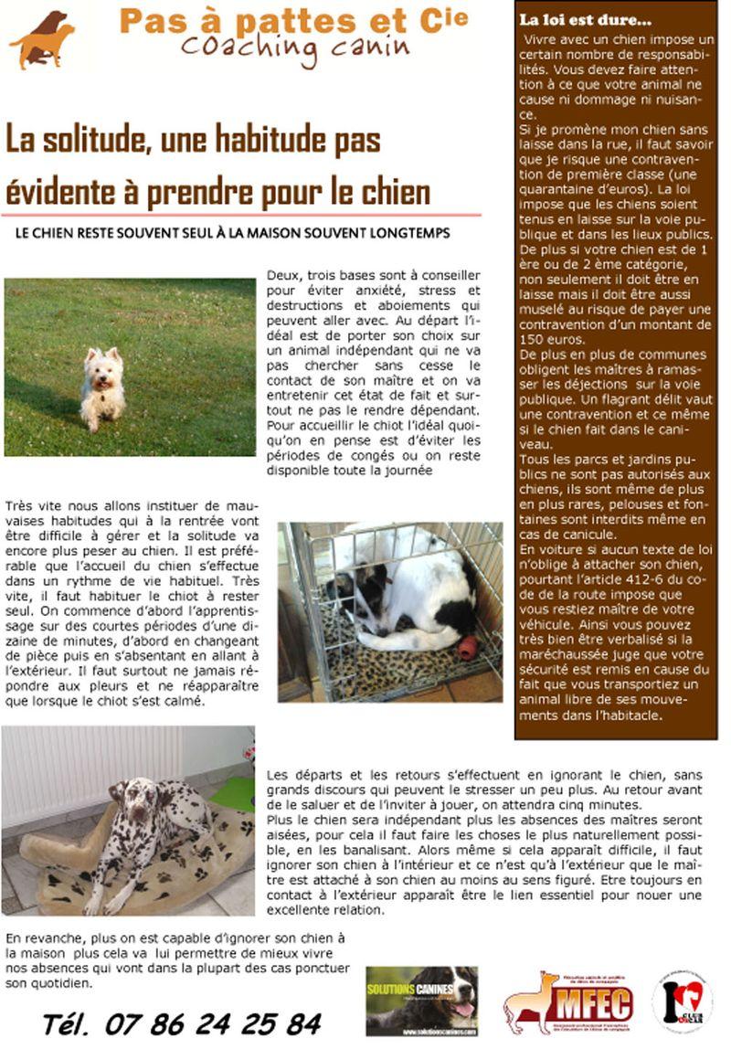 Blog 23  juillet  2014-1