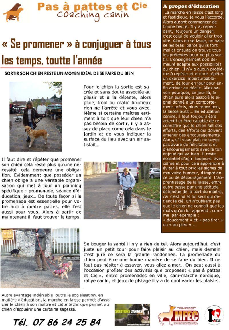 Blog 30  juillet  2014-1