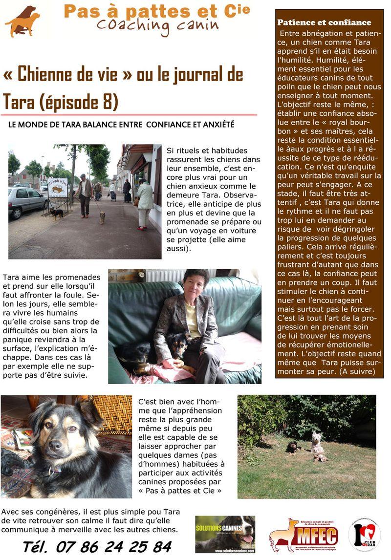 Blog 29 mars  2014-1
