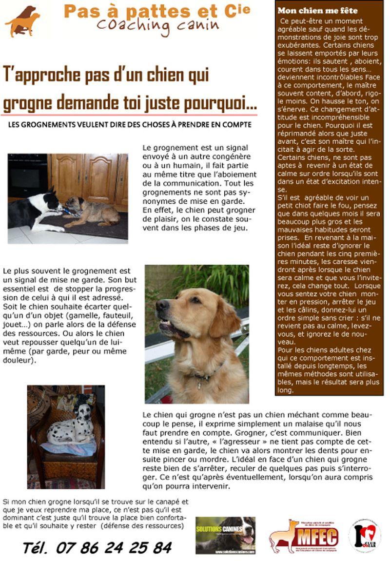 Blog 17 juillet  2014-1