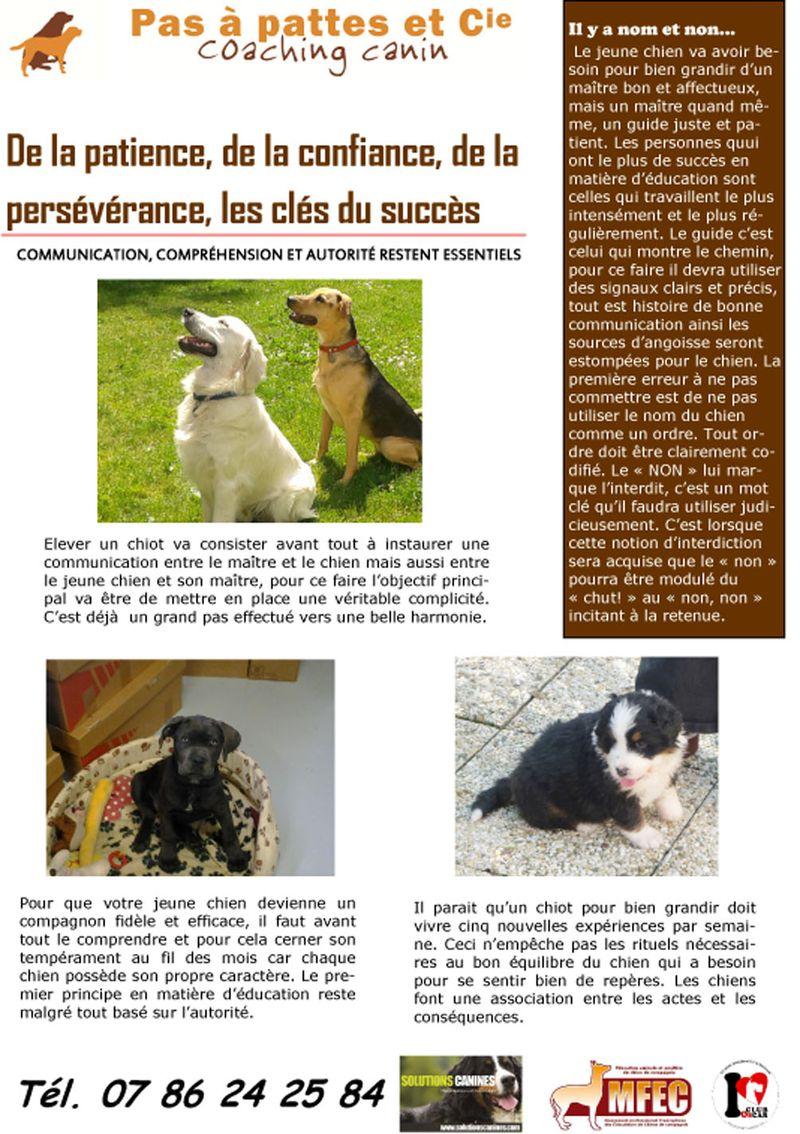 Blog 11 aout  2014-1