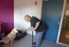 Un chien en maison de retraite